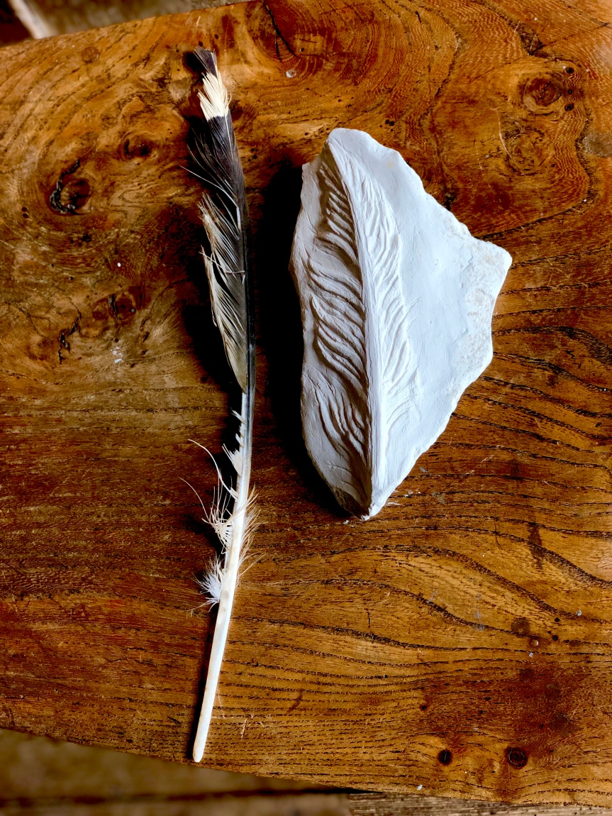 Buzzard Feather Carved in Chalkstone Found Beside It by Jo Sweeting